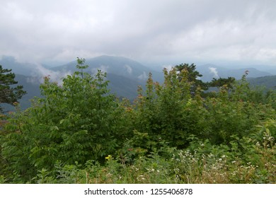 Scenic view of the hazy Appalacian Mountains with low thready clouds and abundant vegetation viewed from the Blue Ridge Parkway in North Carolina
