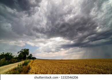 Scenic view of heavy clouds on blue sky background over yellow field. Photo of approaching storm in summer.