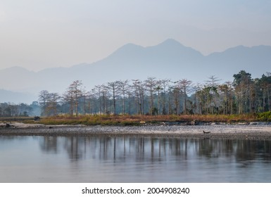 A scenic view of Himalaya from Nameri National Park in the Sontipur district of Assam. Distance from Tezpur to Nameri National Park is about 35 km. It is situated in Assam Arunachal border
