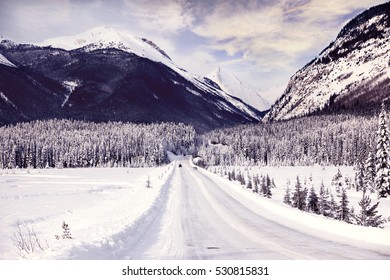 Scenic view of Icefields Parkway in winter, Alberta, Canada