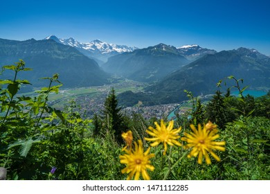 Scenic view of Interlaken and Wengen from Harder Kulm