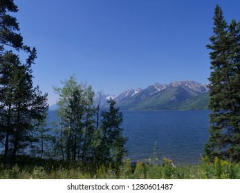 Scenic view of Jackson Lake with the Grand Teton mountain ranges framed by tall trees in the lakeside.