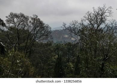 Scenic view at kasauli