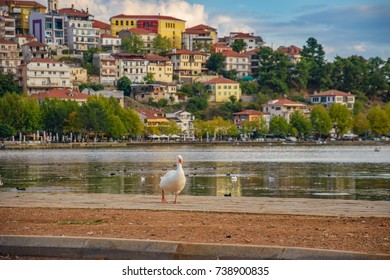 Scenic view of Kastoria town and the famous Orestiada lake in fall season