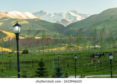 Scenic view of the kyrgyz countryside, with a horse and lampposts.