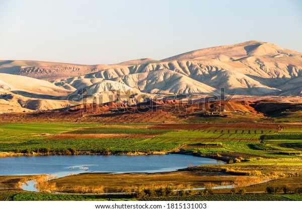 scenic-view-lake-surrounded-by-600w-1815