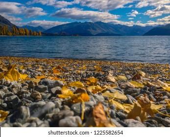 scenic view at Lake Wanaka in Wanaka town, New Zealand