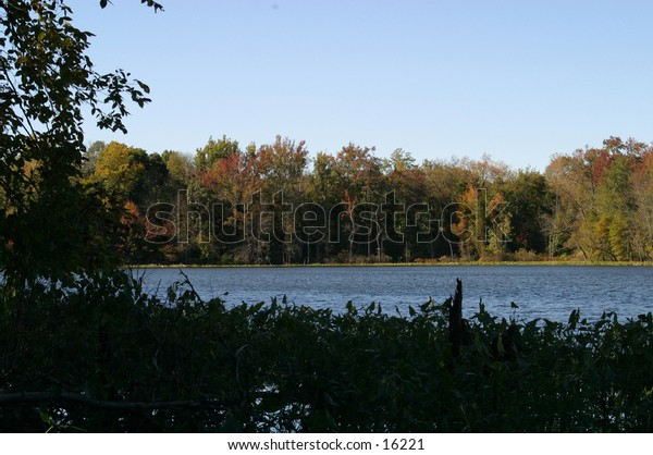 Scenic view of lake and woods in autumn