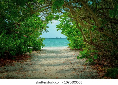 Scenic View looking through a Tropical Forest at the Aqua Blue Ocean and White Sandy Beach on a Sunny Day on Sanibel Island in Florida