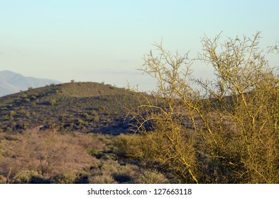 A scenic view of the magnificent desert hills at McDowell Mountain Regional Park in Arizona, in the golden light of late afternoon.