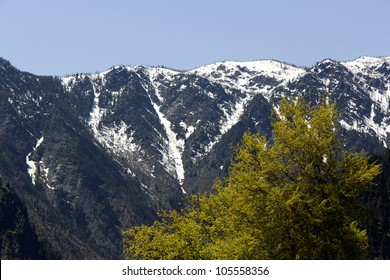 A scenic view of mountains and trees on a nice sunny day