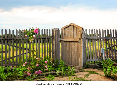 Scenic view of old wooden gate with blooming roses in garden