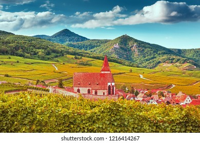 Scenic view on church and Hunawihr wine village in the middle of vineyards of Alsace region, France
