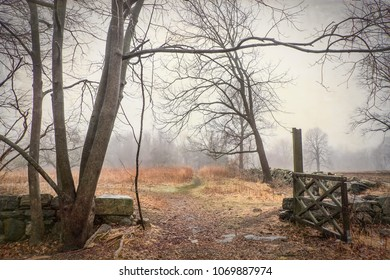 Scenic view of an open gate in a local park on a foggy day