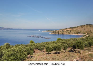 Scenic view over coast of the Ionian Sea. Mollusks farming. Nature and travel. Albania, Vlora County, near Saranda