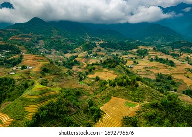 Scenic view of paddyfield in Sapa