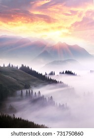 Scenic view of a panorama of a mountain slope with a fog and a haze in Ukraine, Carpathians. Dawn over the forest after the rain with the mist sea is very beautiful and gentle
