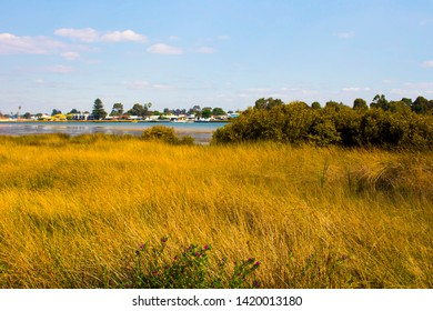 Scenic view of the parkland and grassed areas from the cycleway through the Leschenault Estuary  mangrove reserve  in Bunbury Western Australia on a fine morning in late summer.