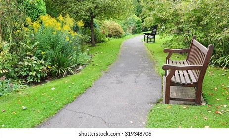 Scenic View of a Pathway and Wooden Bench in a Beautiful Leafy Landscape Garden