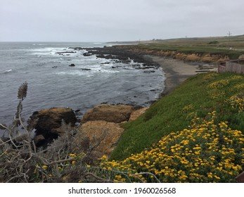 A scenic view of the Pigeon Point in the Historic Park Pescadero in California, USA