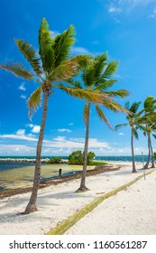 Scenic view of the popular Florida Keys along the bayside.