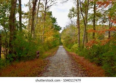 Scenic view of a rails-to-trails bike path in autumn