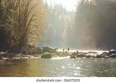 scenic view of the river from Snoqualmie falls with golden fog when sunrise in winter season,Washington,USA.