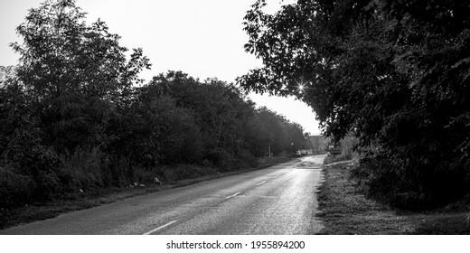 Scenic view of road, Kostol, Kladovo, Bor District, Serbia - Shutterstock ID 1955894200