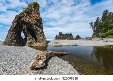 scenic view in Ruby beach on summer.Olympic national park,Washington,Usa.