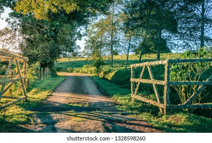 Scenic view of a small country road and a moss-covered farm gate in Costa Rica