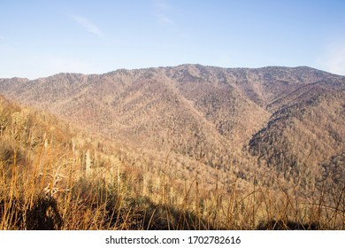 Scenic view of the Smoky Mountains