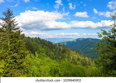 Scenic view of the Smoky mountains National Park during a Summer day with blue sky. Sweat heifer creek trail. Appalachian trail in Tennessee.