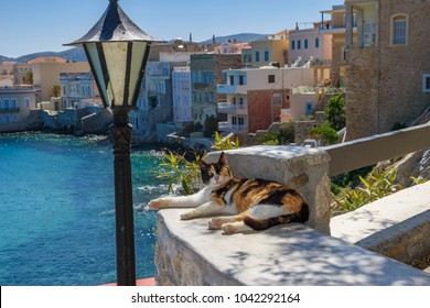 Scenic view with street cats in the narrow streets of Ermoupolis, Syros island, Greece, Europe.