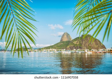 Scenic view of Sugarloaf Mountain in Rio de Janeiro Brazil from Botafogo Bay framed by palms