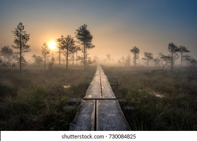 Scenic view from swamp with wooden path at autumn morning in Torronsuo National park, Finland