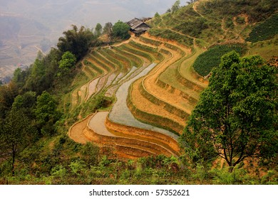 A scenic view of a traditional farm and its rice-field terraces in Sapa, North Vietnam