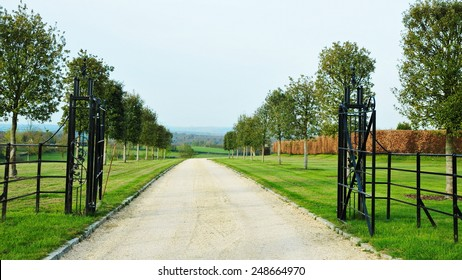 Scenic View of a Tree Lined Driveway through a Beautiful English Country Estate