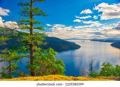 Scenic view of the trees, ocean and shoreline at Maple Bay in Vancouver Island, British Columbia