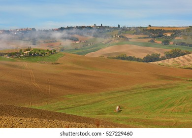 Scenic view of Tuscan fields and hills with fog at early morning. Val d'Orcia, Tuscany, Italy