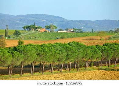 Scenic view of typical Tuscany landscape. Italy