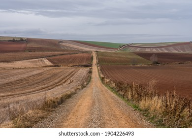 Scenic view of an unrecognizable girl in the distance on a path along the camino of santiago into the french way