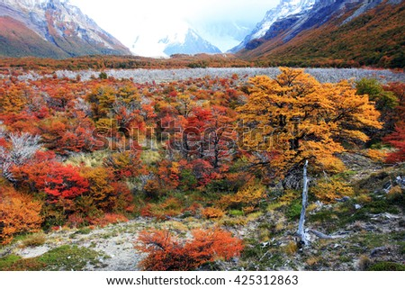 scenic-view-valley-between-mountains-450