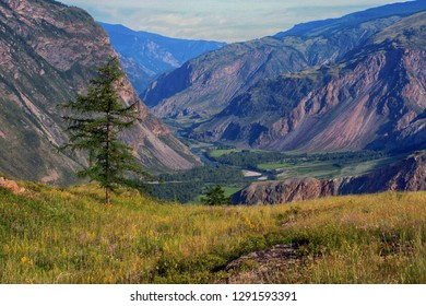 Scenic view of the valley of the river Chulyshman in Altai in Russia