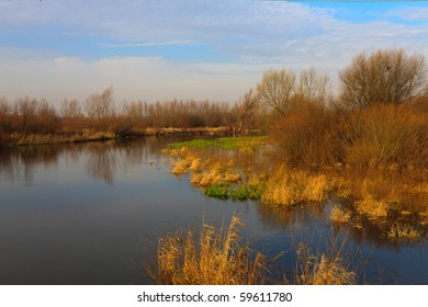 Scenic view of Wieprz river in autumn on a sunny day.