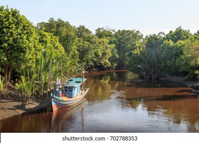 Scenic view of wild tropical jungle with boat on the Borneo island, Indonesia. Kalimantan