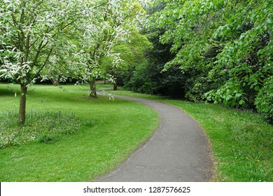 Scenic View of a Winding Path in a Peaceful Landscape Garden