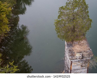 Scenic ViewDrone Aerial Photography  Looking Down at Live Green Tree Plant Growing on Abandoned Dilapidated Brick Stone Concrete Vertical Pillar Remains in Decay of Old Historic Bridge  Potomac River.