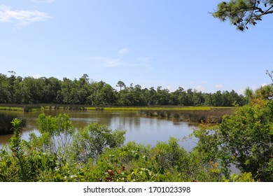 scenic views of waterways and forests of biloxi mississippi state park
