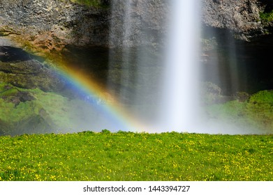 Scenic waterfall and rainbow background with green grass on the foreground