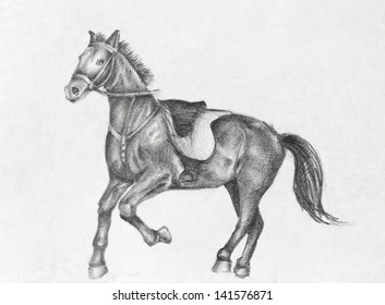 Scetch of a running horse, pencil drawing on white paper artist at age of 15.